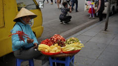 Hanoi Fruit Seller